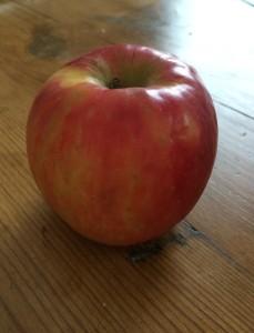 Omenassa oli 10 siementä, mutta montako omenaa on yhdessä siemenessä?
